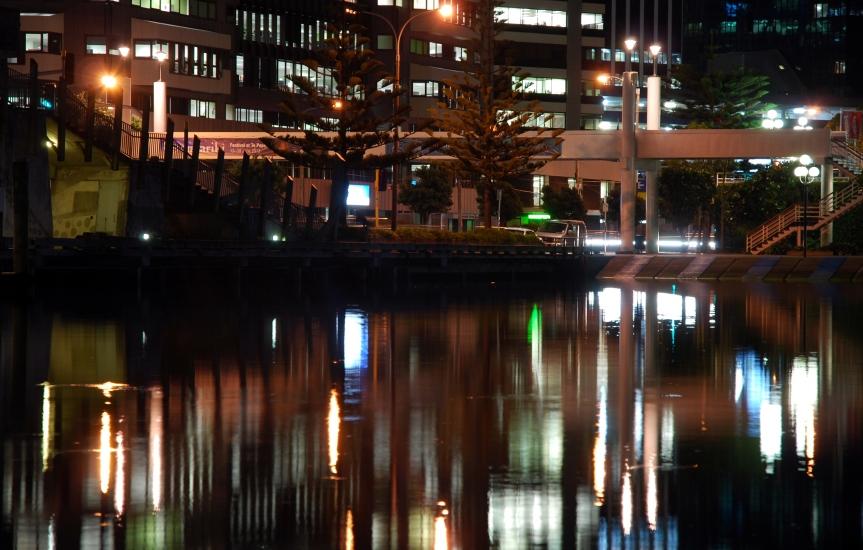 Wellington evening lights
